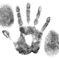 Veline,teoremi e misteri su un magistrato al di sopra di ogni sospetto